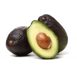 Tomate  1 Kg.